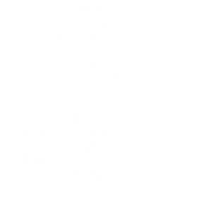 nuestro servicio tecnico